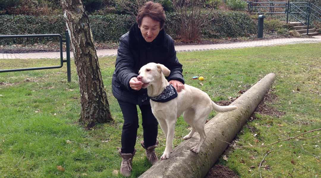 Tiergestützte Therapie durch Hund Lea mit einer Patientin im Außenbereich