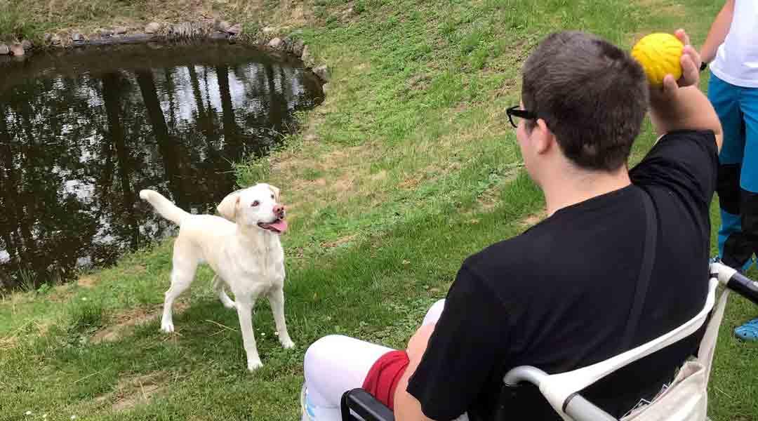 Tiergestützte Therapie Hund Ball Wasser