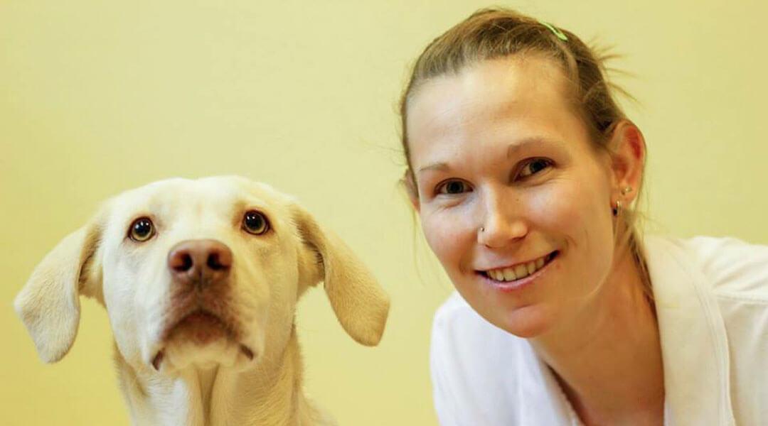 Tiergestützte Therapie mit Therapiehund Lea